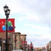 Custom Light Pole Banner for a shopping center